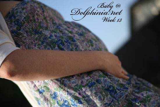 Pregnancy: Week 13