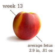 Week 13 - Peach