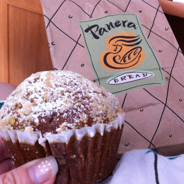 Pumpkin Muffin at Panera