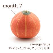 Month 7