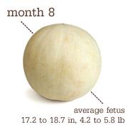 Month 8