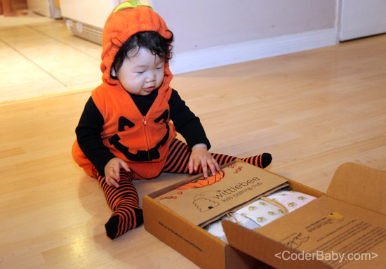 CoderBaby WittleBox #6